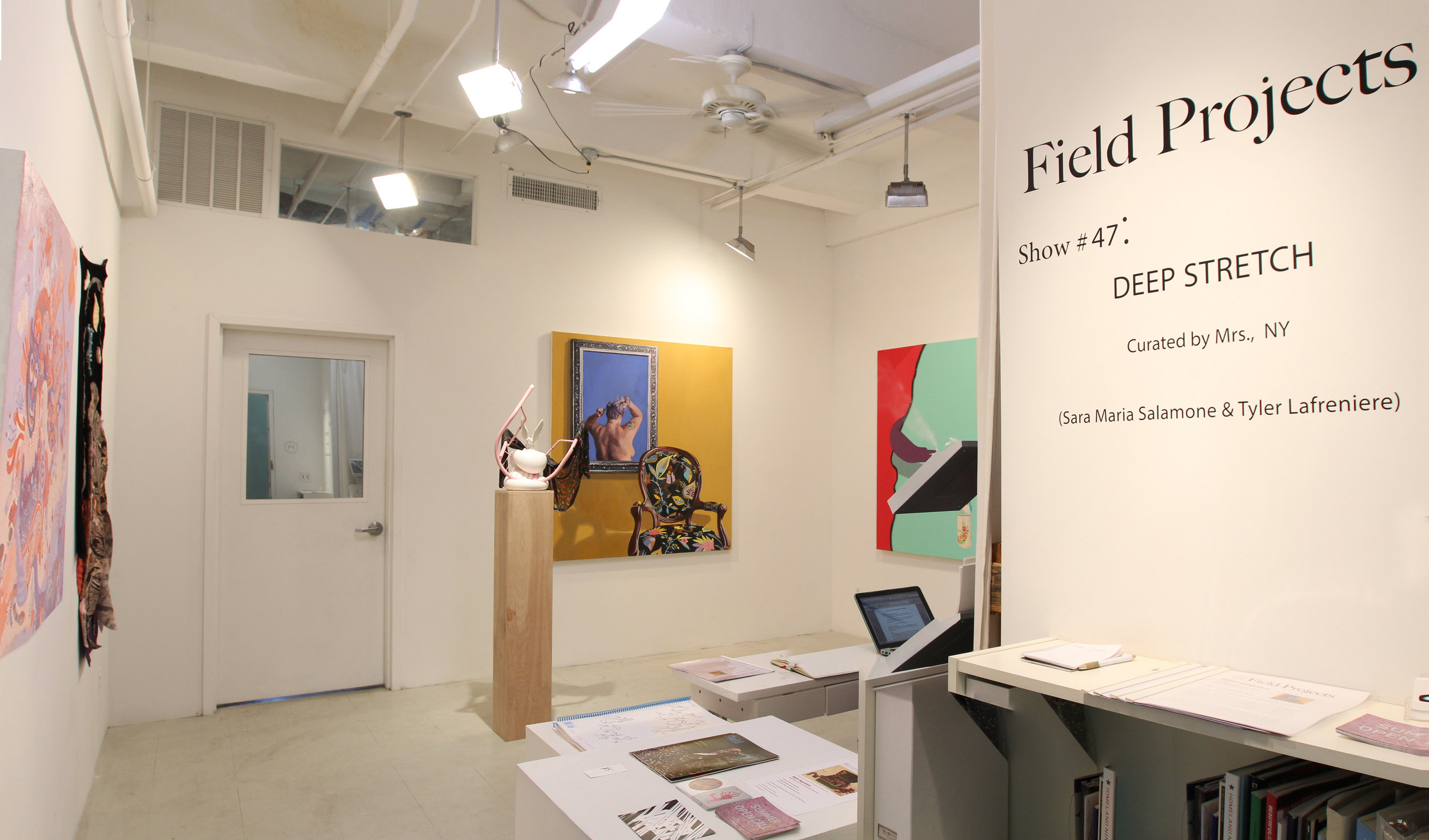 Show #47: Deep Stretch , 2018  Field Projects, NY Opening January 11, 2018  curated by Sara Maria Salamone & Tyler Lafreniere with   Caitlin Albritton, Dan Fig, Peter Hamlin, Lydia Pettit, Megan Stroech