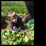 Lil Farmer April 6 18 3.png