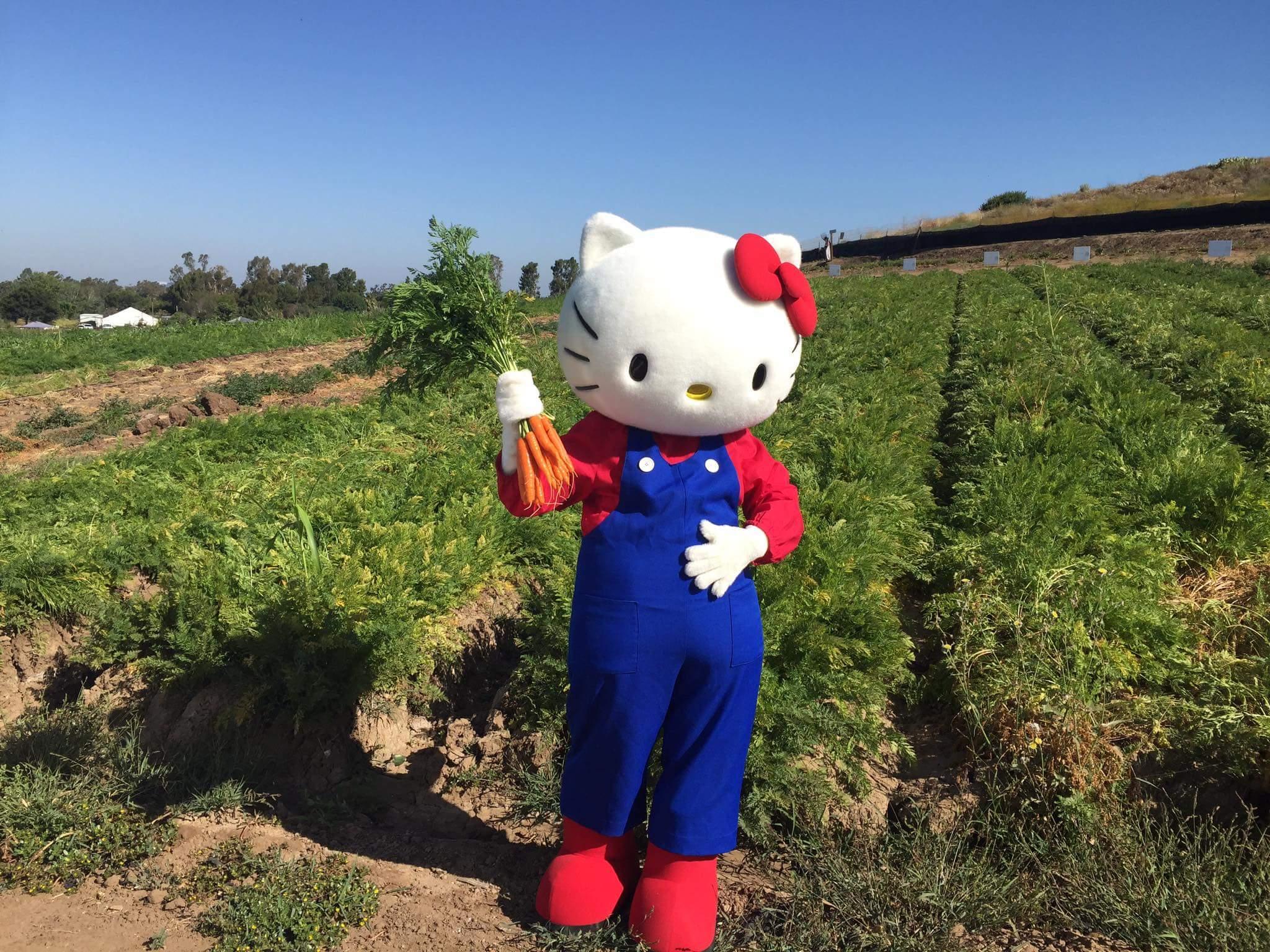 Farmer Hello Kitty