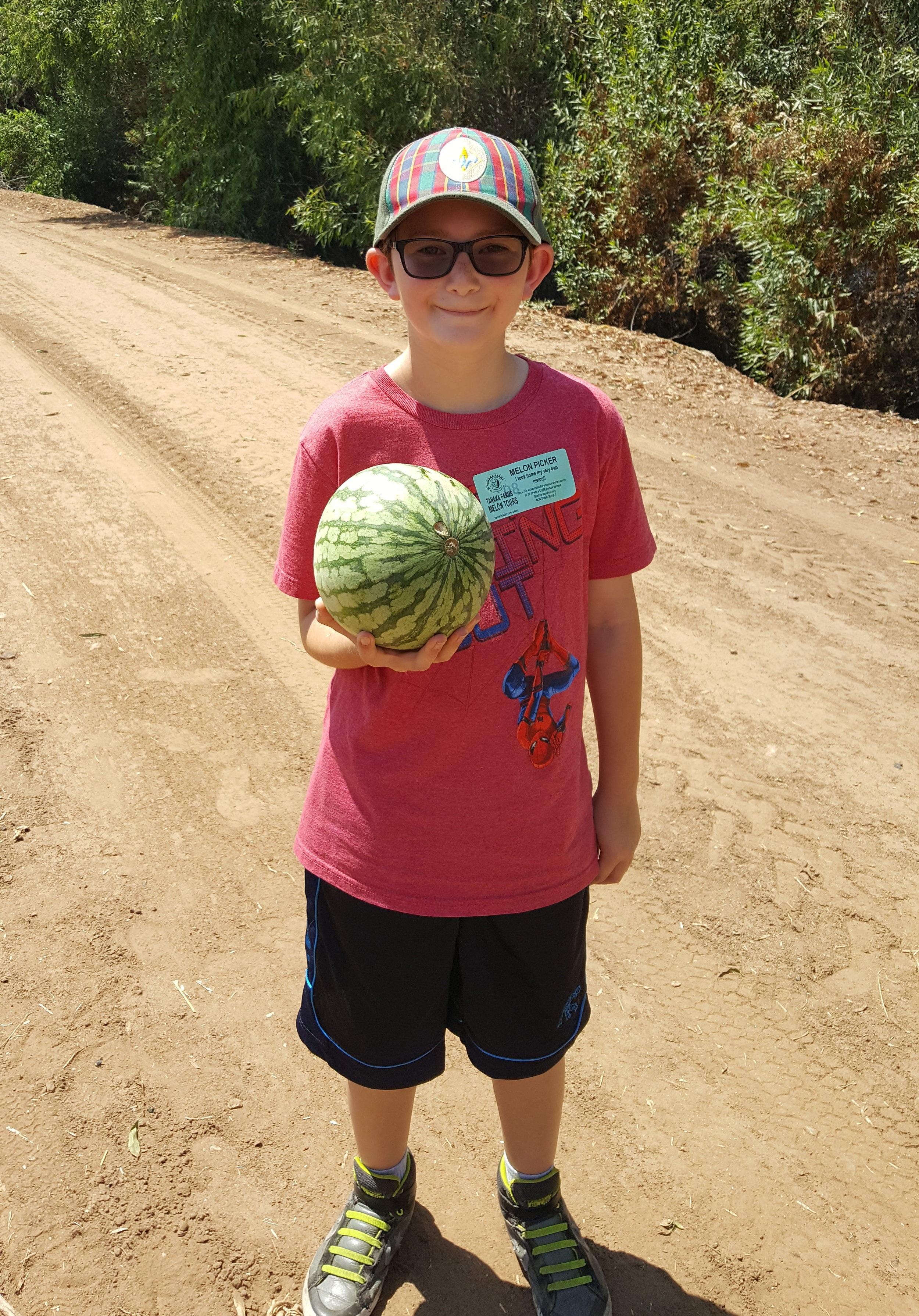 Melon+Tours