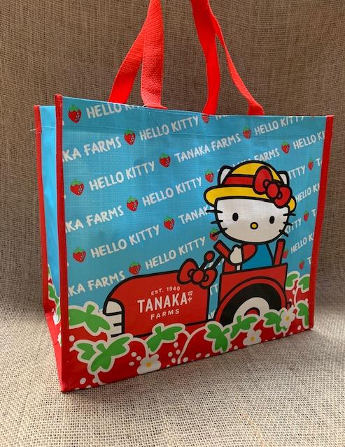 70851ba2d Sanrio Blue Bag Front.jpg.