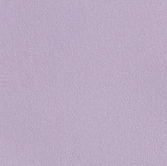 lilac web.jpg