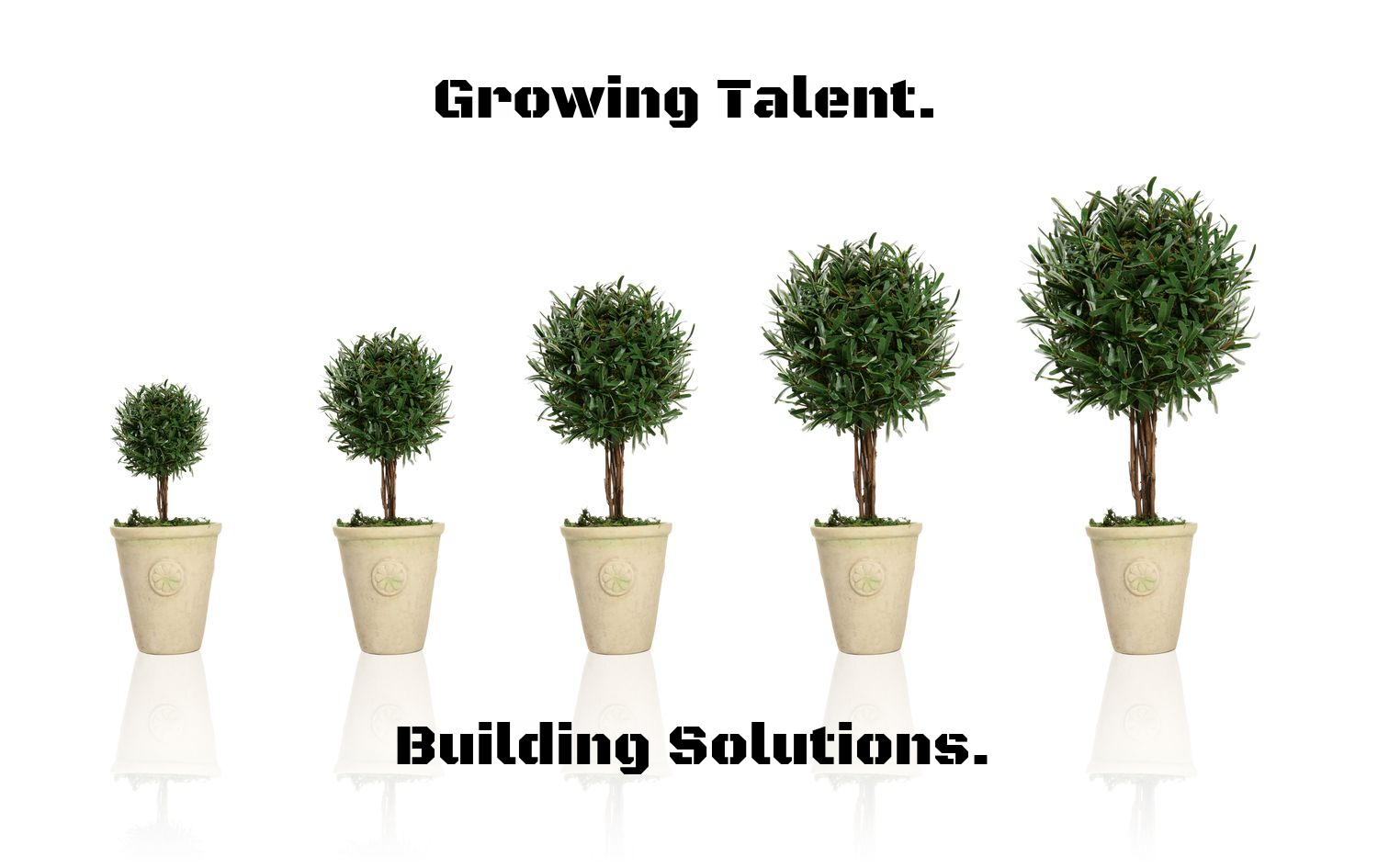 Growing Talent. Building Solutions.