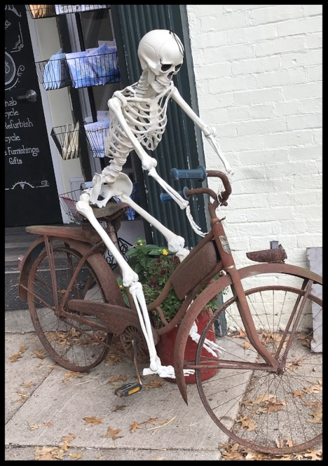 Now that I have your attention. .. Of course, this is  not  what I am advocating or expecting when riding a bike. I just found this funny picture on my phone. Taken around Halloween outside a thrift shop.