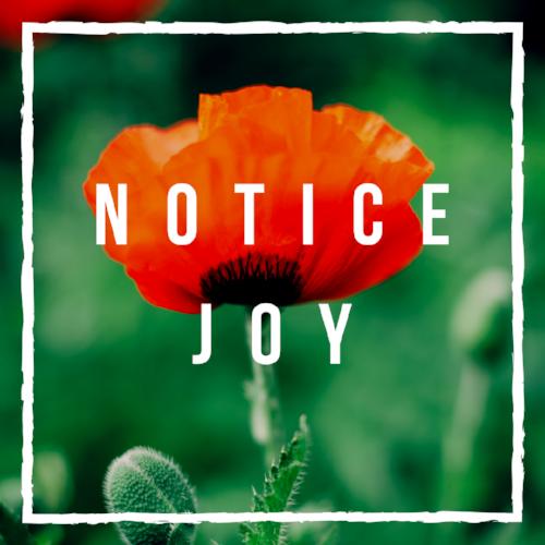 Notice Joy.png