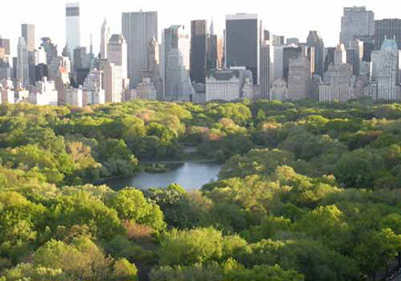An over 750 acres oasis in the middle of Manhattan.