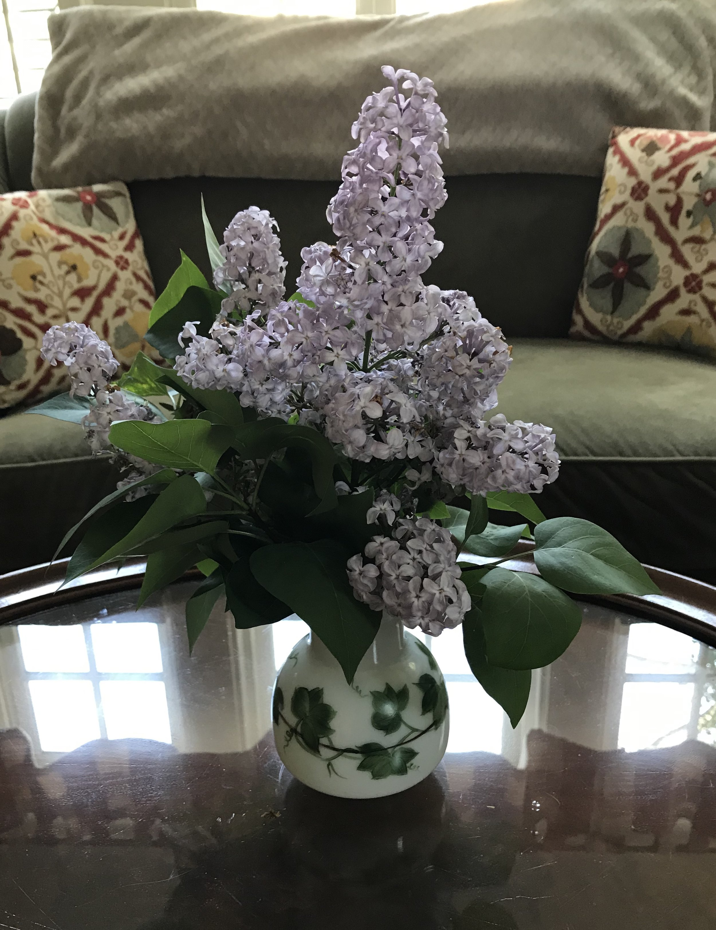 Here is a bouquet of lilacs from the ten-year old bush, fashioned in my mother's old white vase.