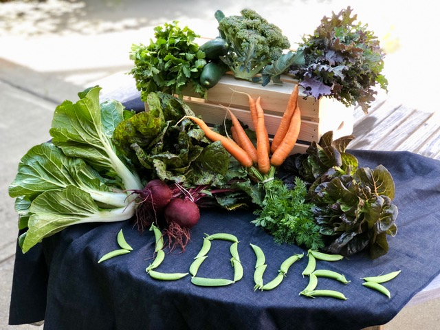 Produce from Spoon Full Farm | A Braver Brand with Kate K. McCarthy