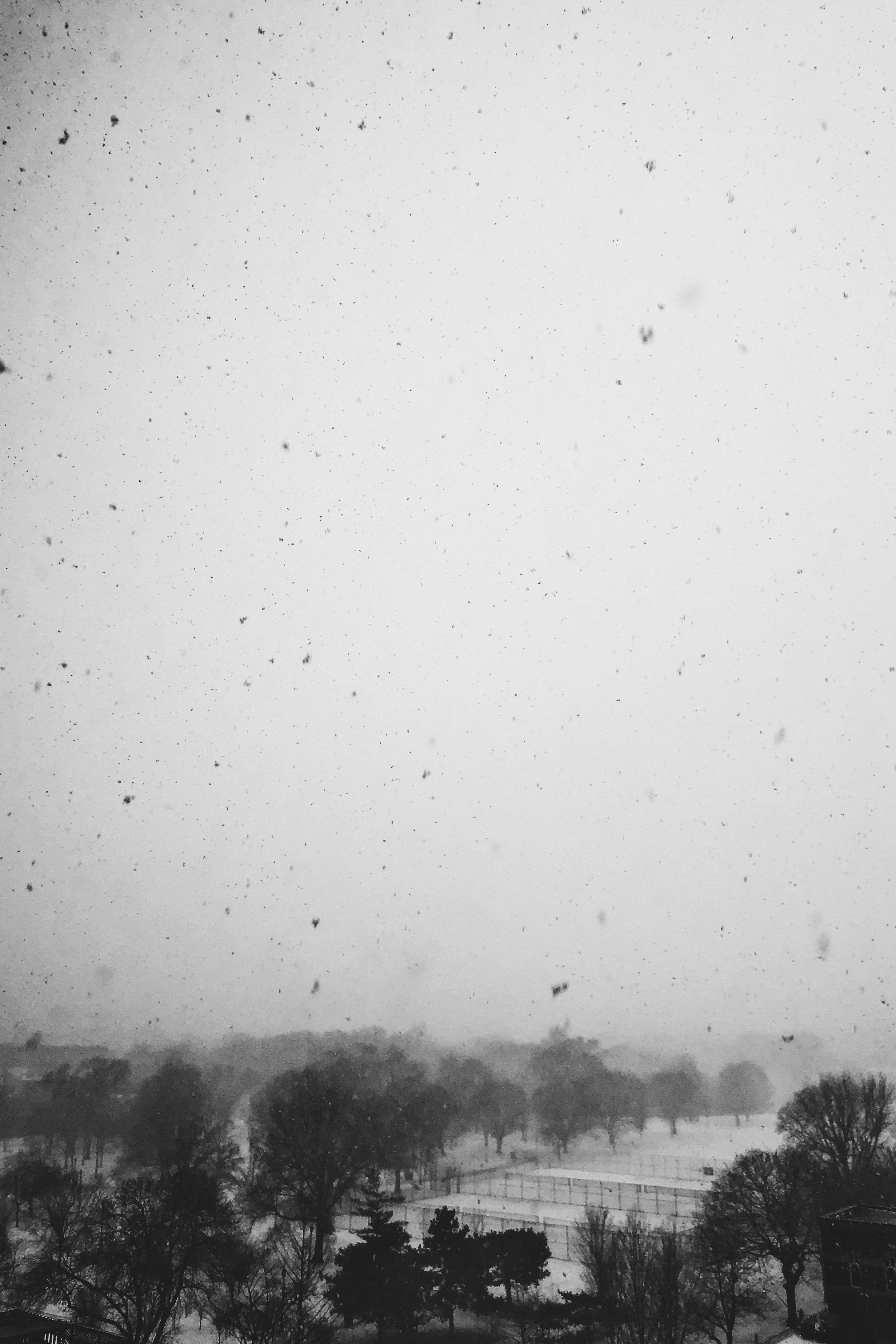 BW Snow.JPG