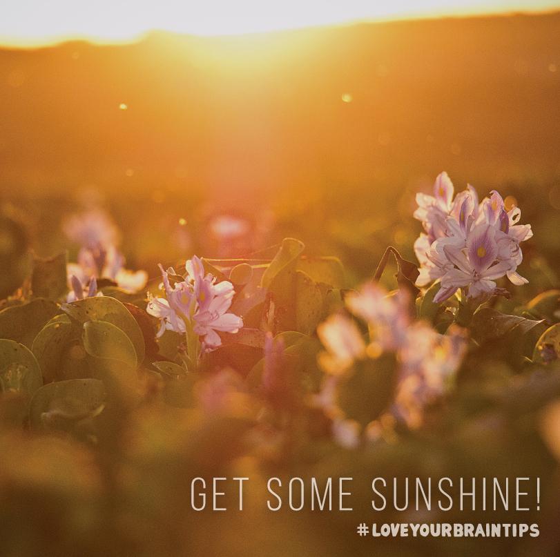 130_Get-some-sunshine_IG.jpg