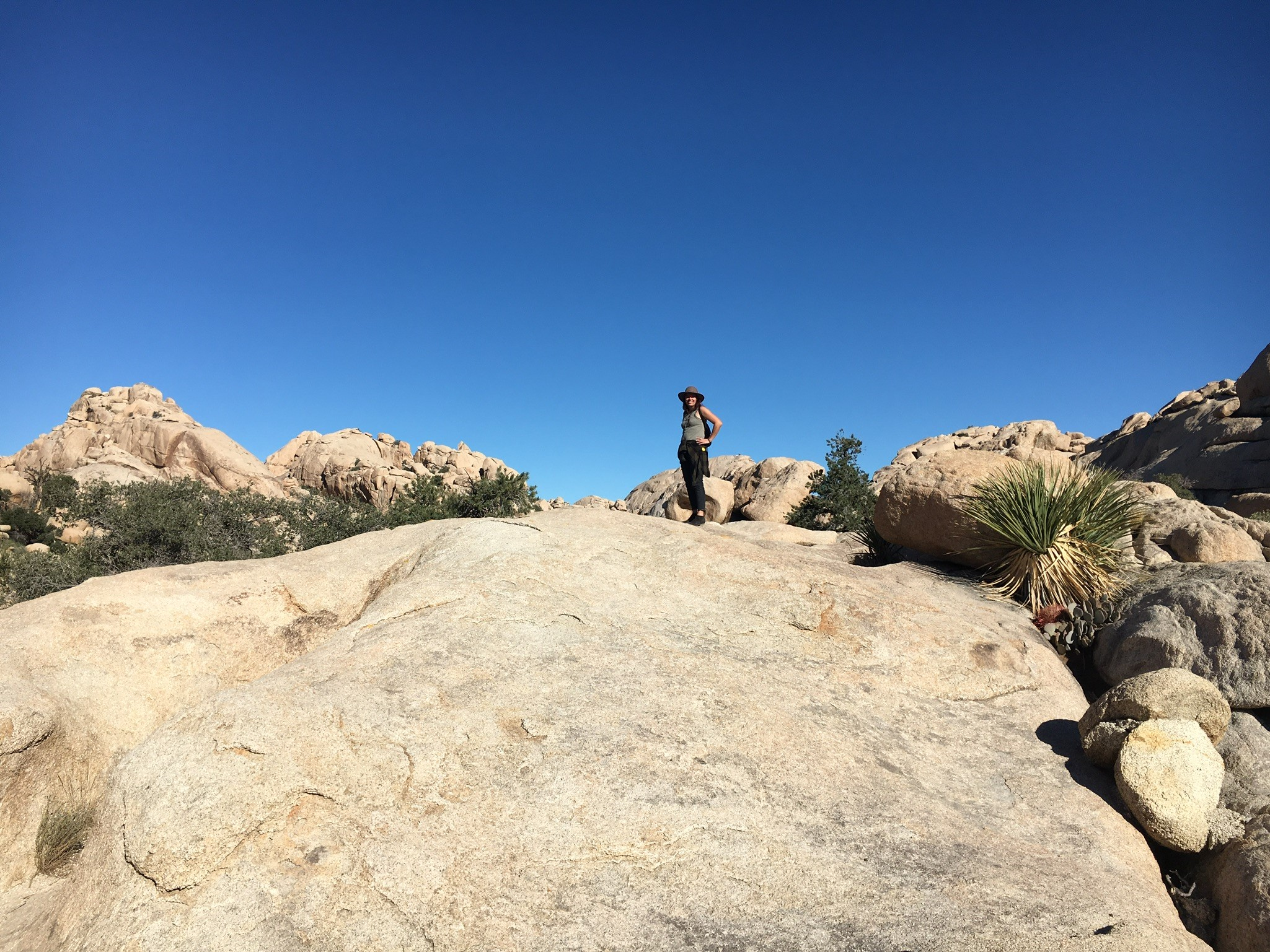 Hiking in Joshua Tree National Park. One of my first memories after the crash.