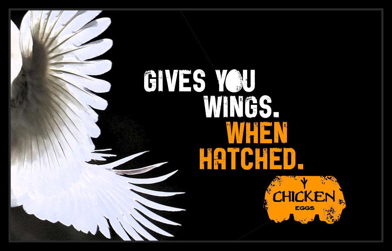 eggnergy billboards - wings.jpg
