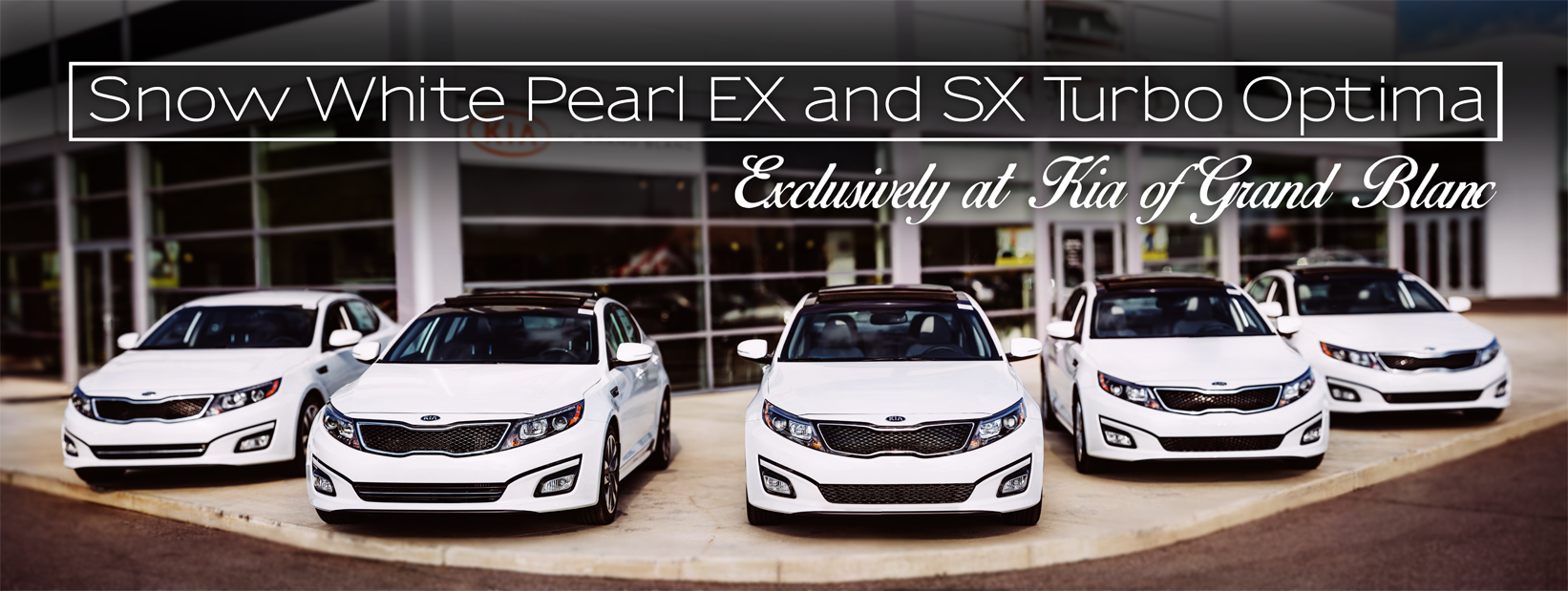 Web Ad done for local Dealership. Photography by  Visual Theory