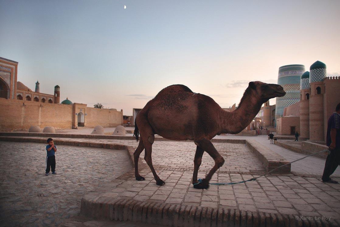 Life in the citadel of Khiva / Scène de vie dans la citadelle de Khiva | UZBEKISTAN