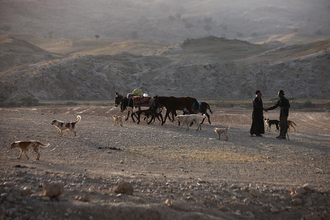 Each year they migrate with their herds of sheep, cattle, and goats from summer pastures on the high plateaus of the   Chaharmahal valley  , across the   Zagros Mountains  , to over-winter their herds on the lowland plains of   Khoozistan   | I  RAN