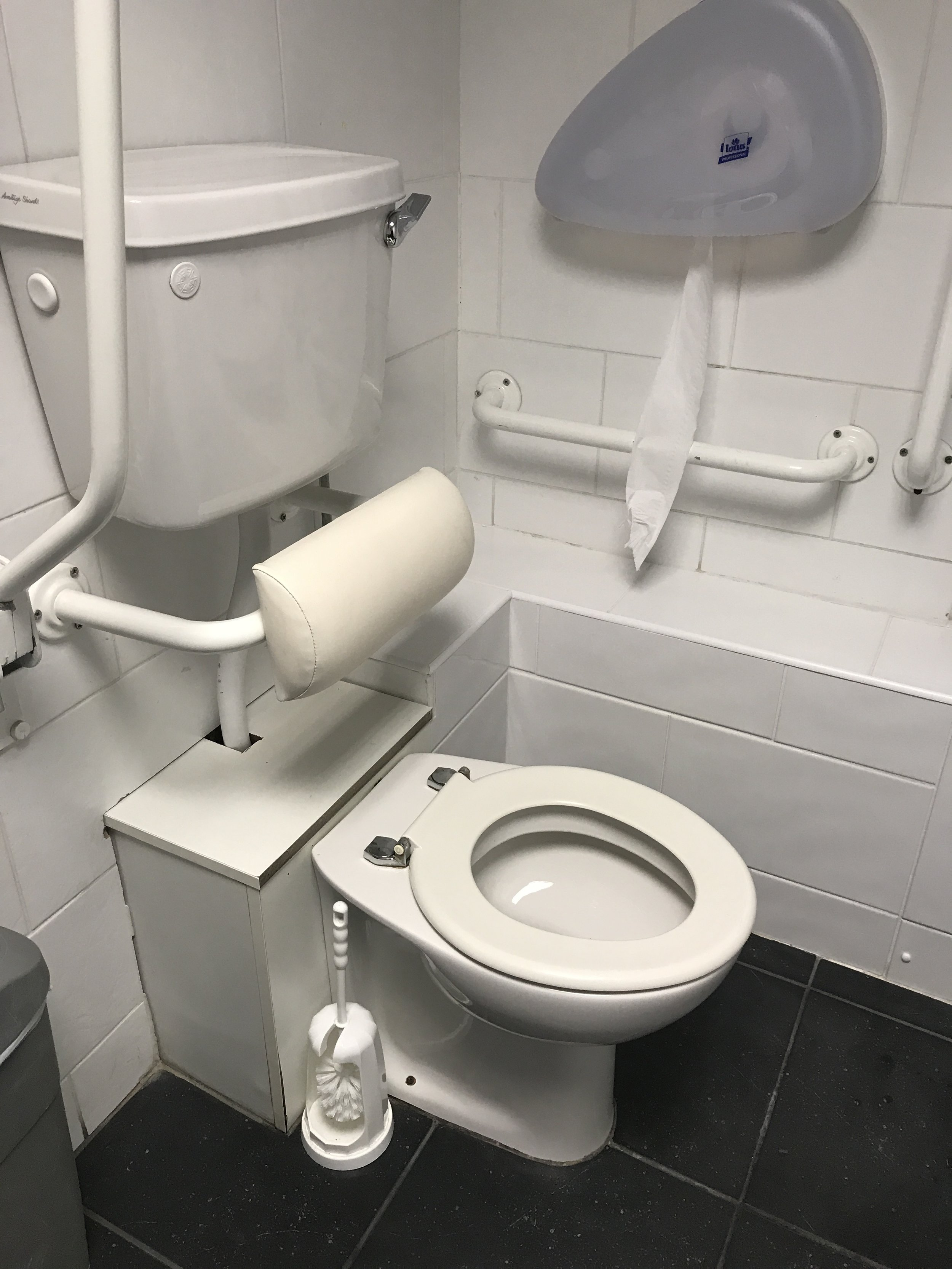 This toilet was having a serious MOMENT.