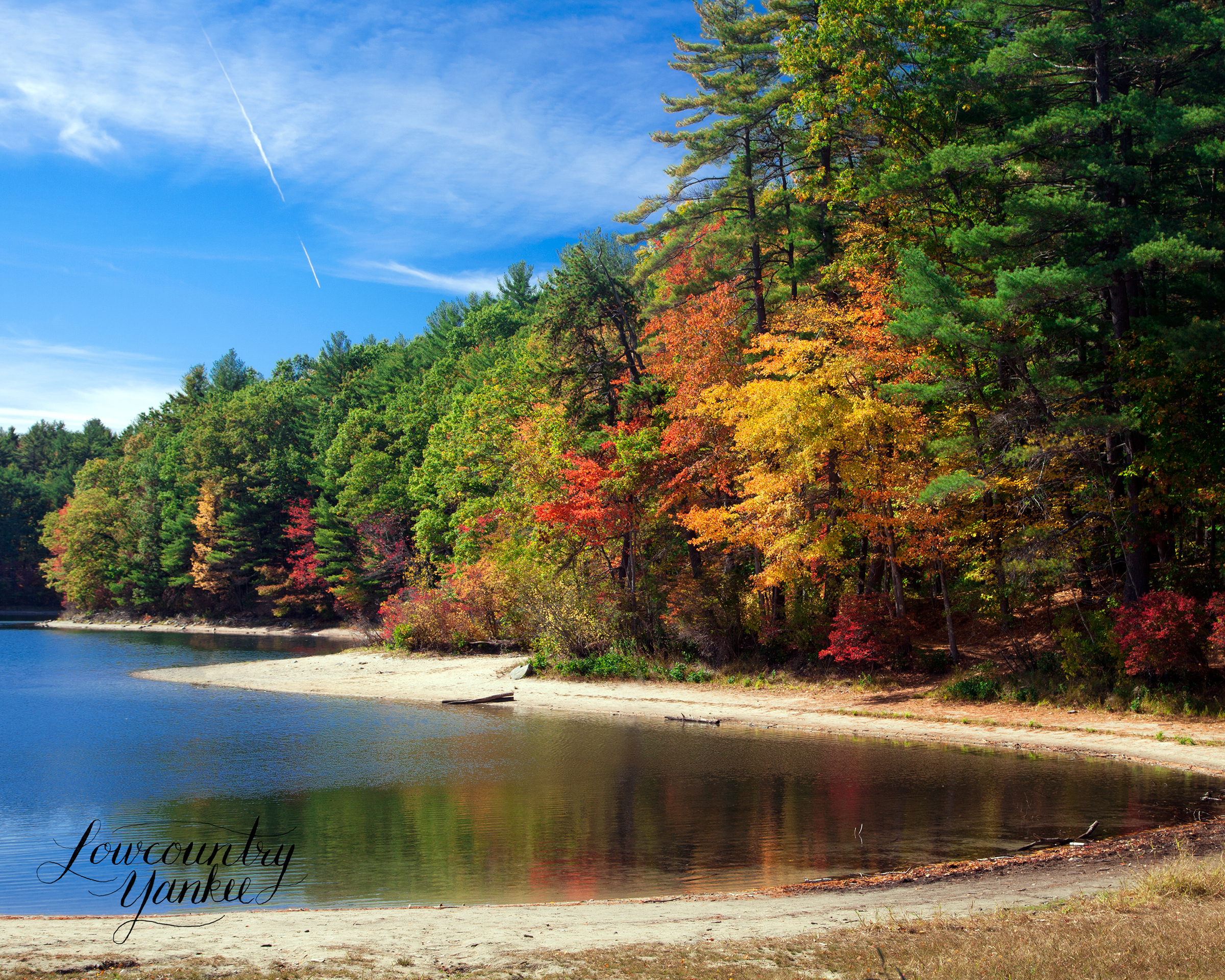 Autumnal tints reflect in Walden Pond
