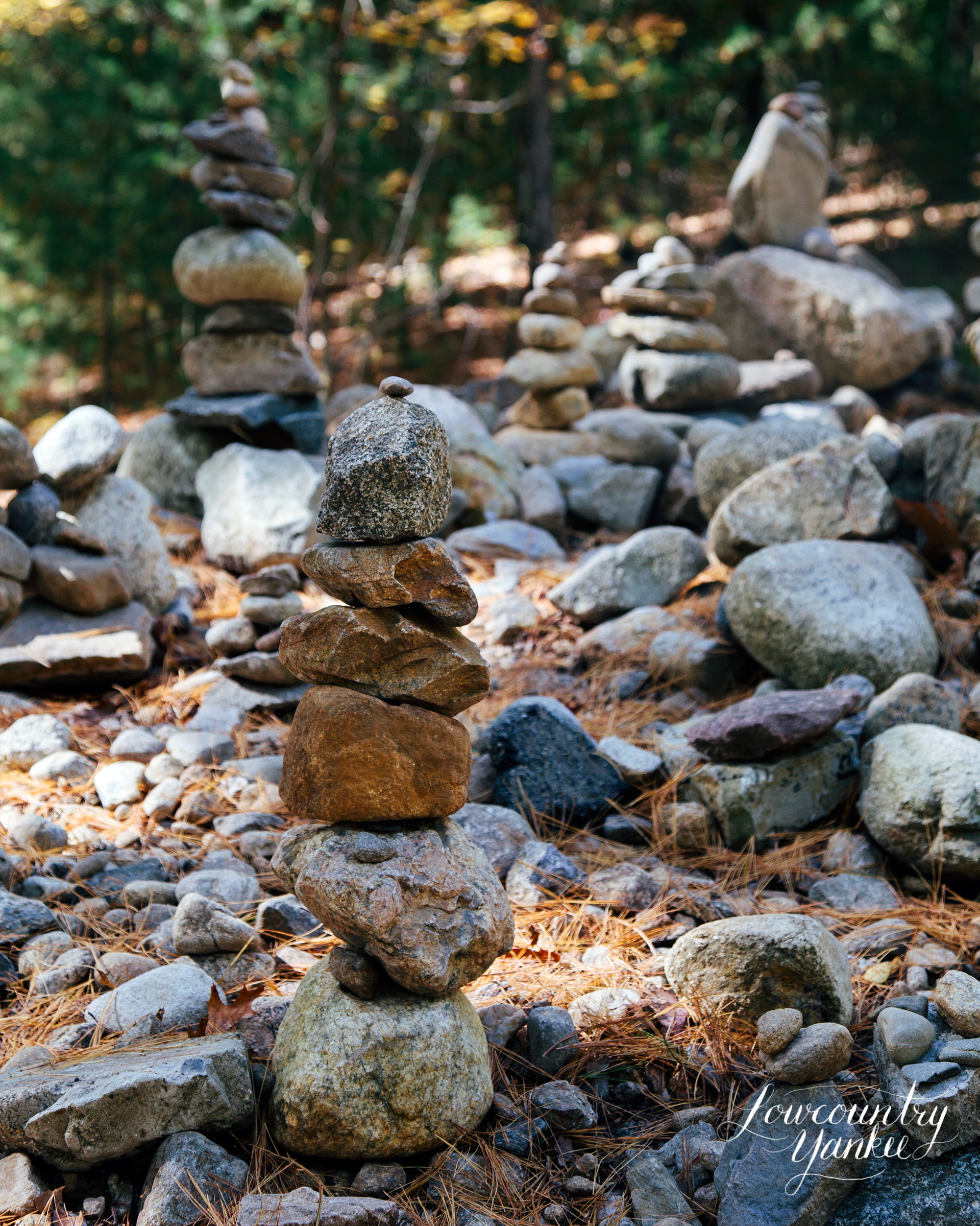 A rock monument started by Bronson Alcott to mark the place where Thoreau's cabin once stood.