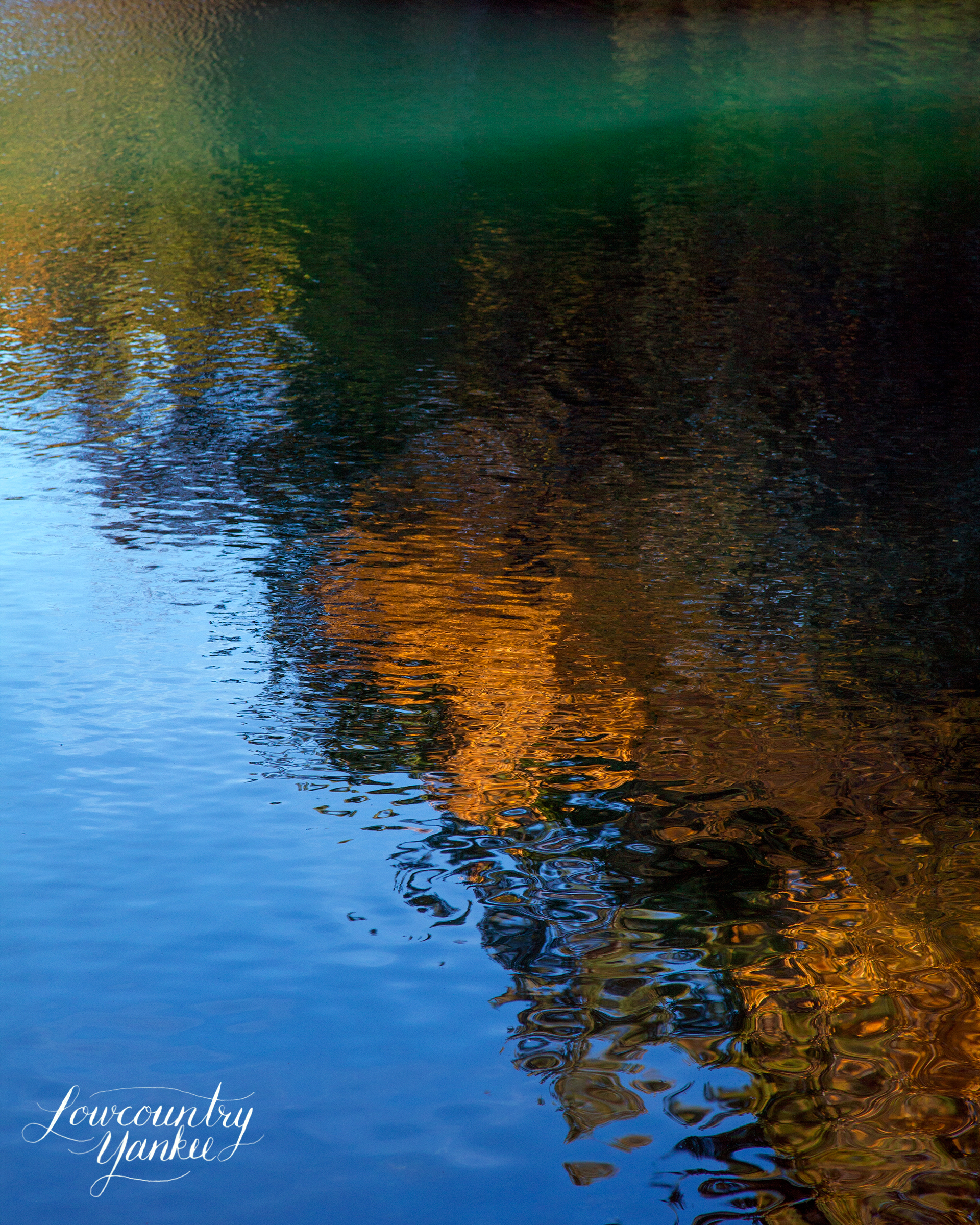 Reflections in Walden Pond.