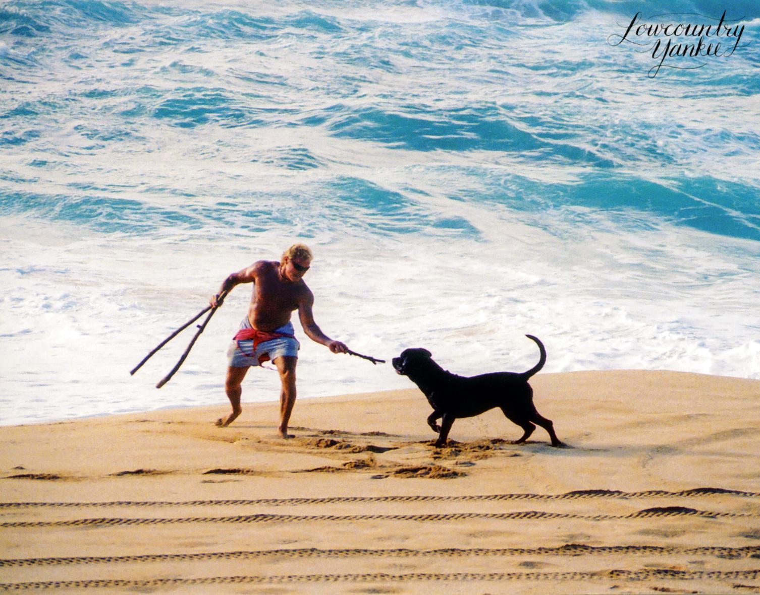 North ShoreO'ahu, Hawai'i 2003
