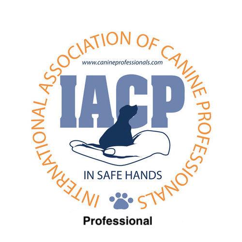 IACP Professional.jpeg