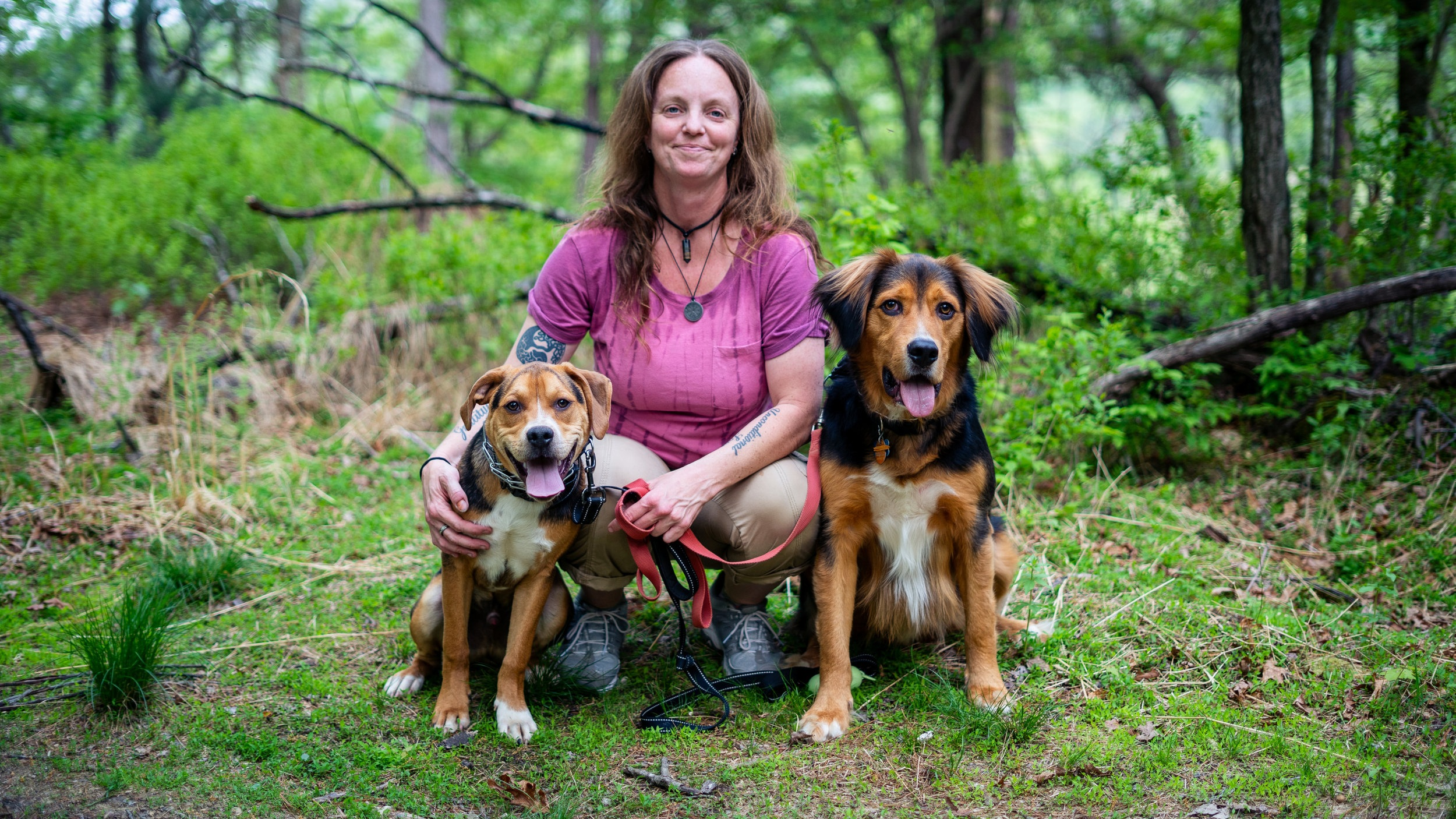 About Jessica Troop - Learn more about Jessica, her journey as a dog trainer, and her training philosophy.