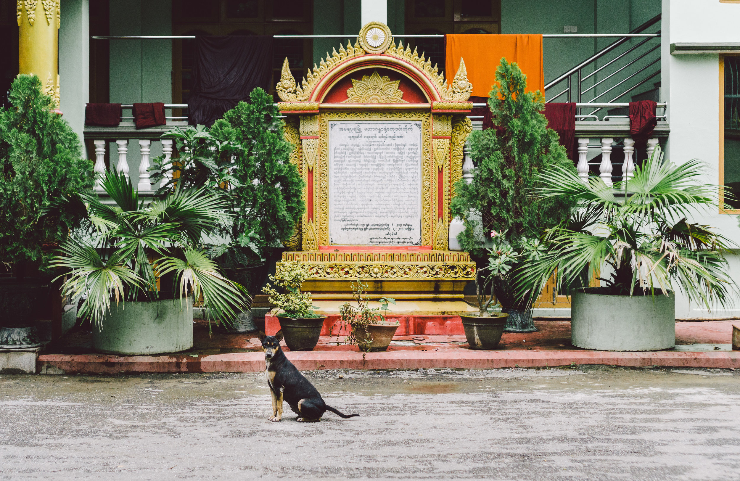 Myanmar2.jpg