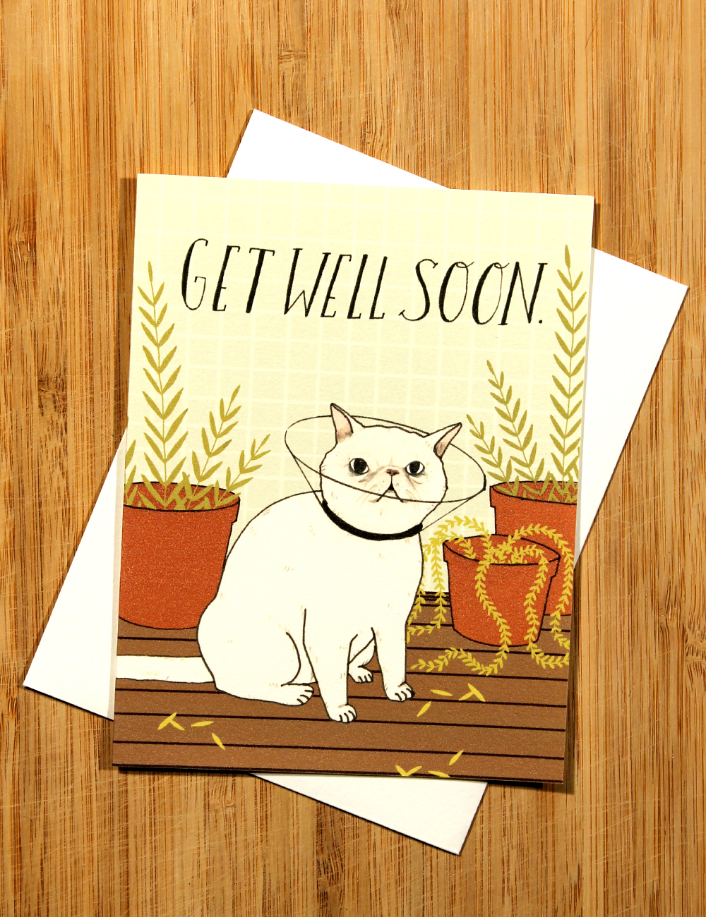 Getwellcatcard.jpg
