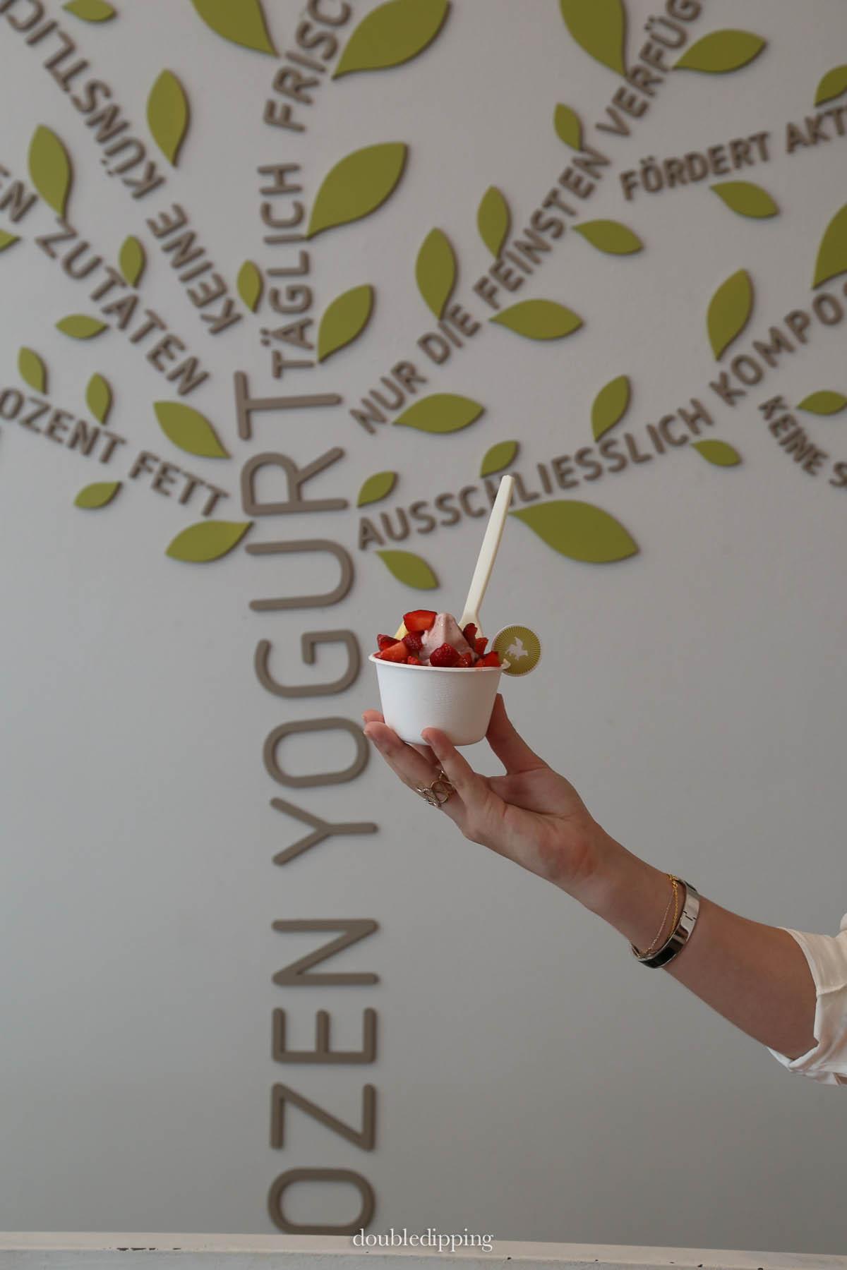 Frozen Yoghurt Vienna
