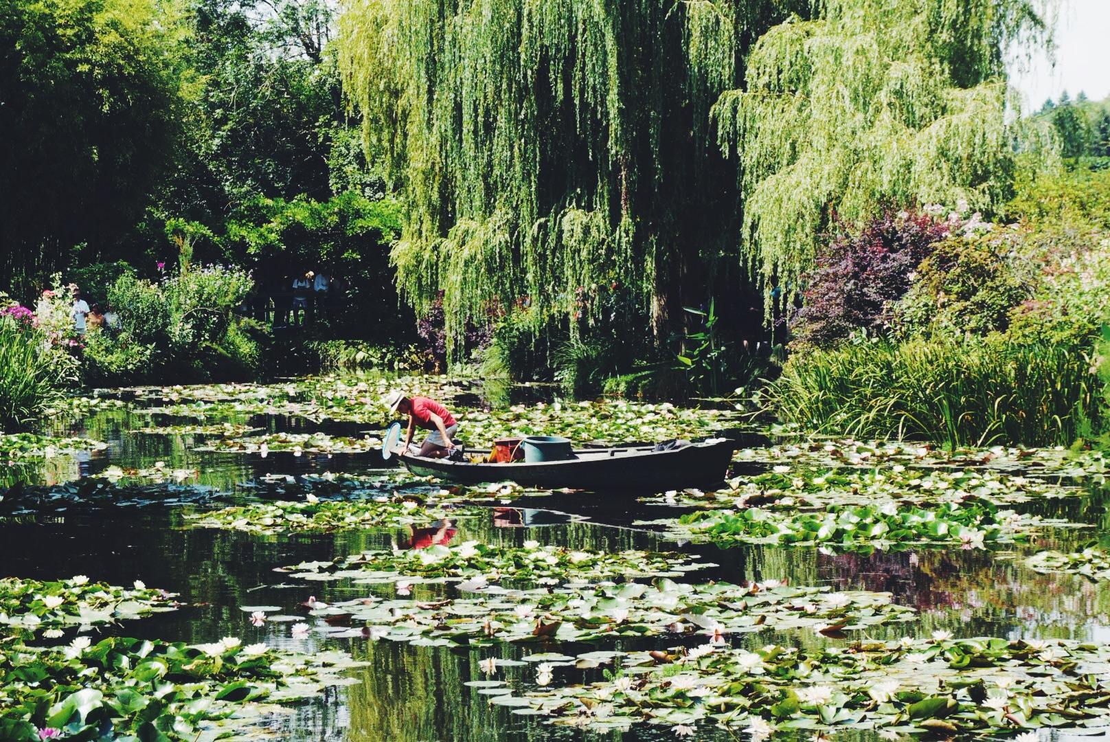 Monet Gardens in Giverny