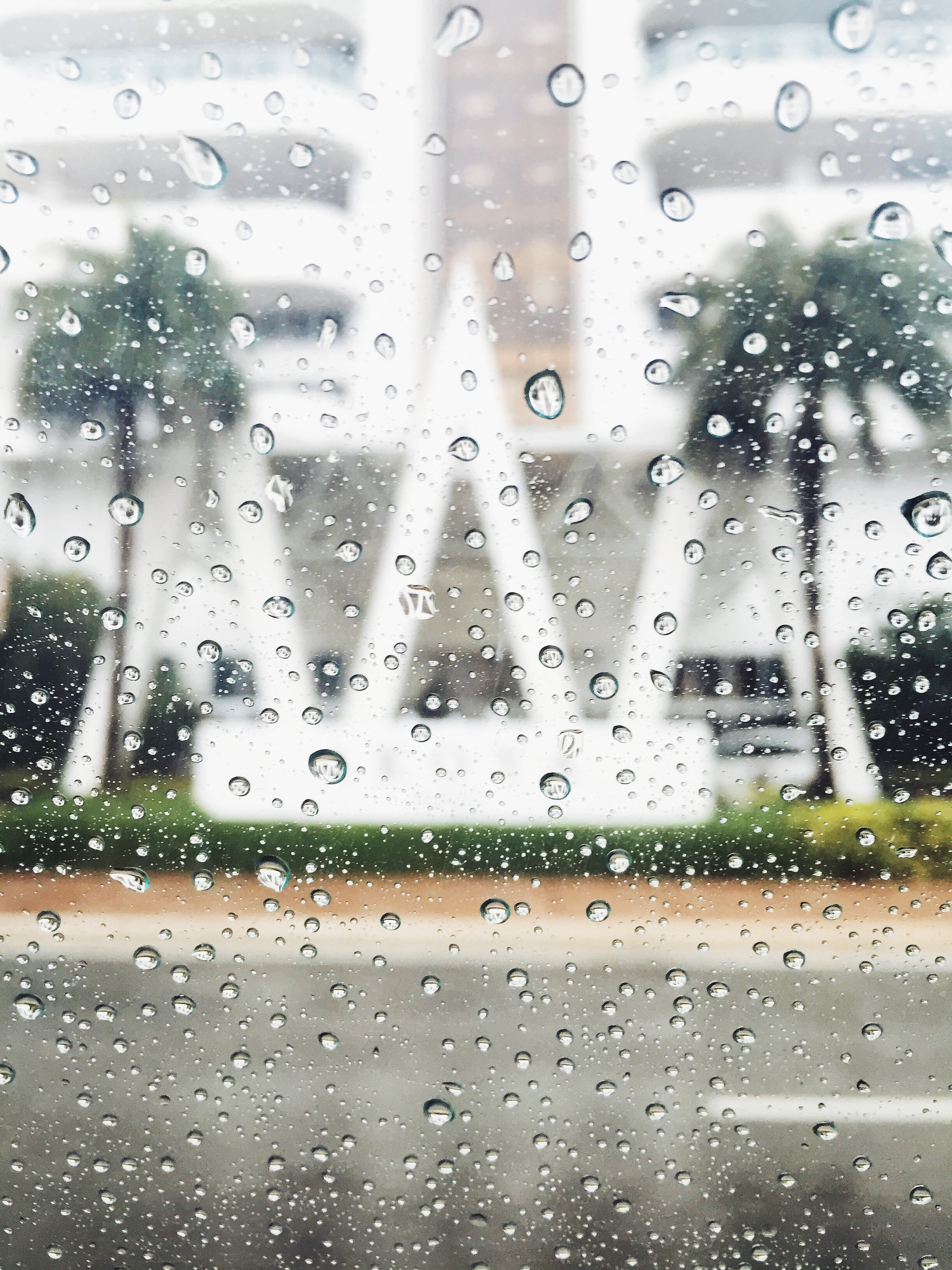 what to do in miami when it rains