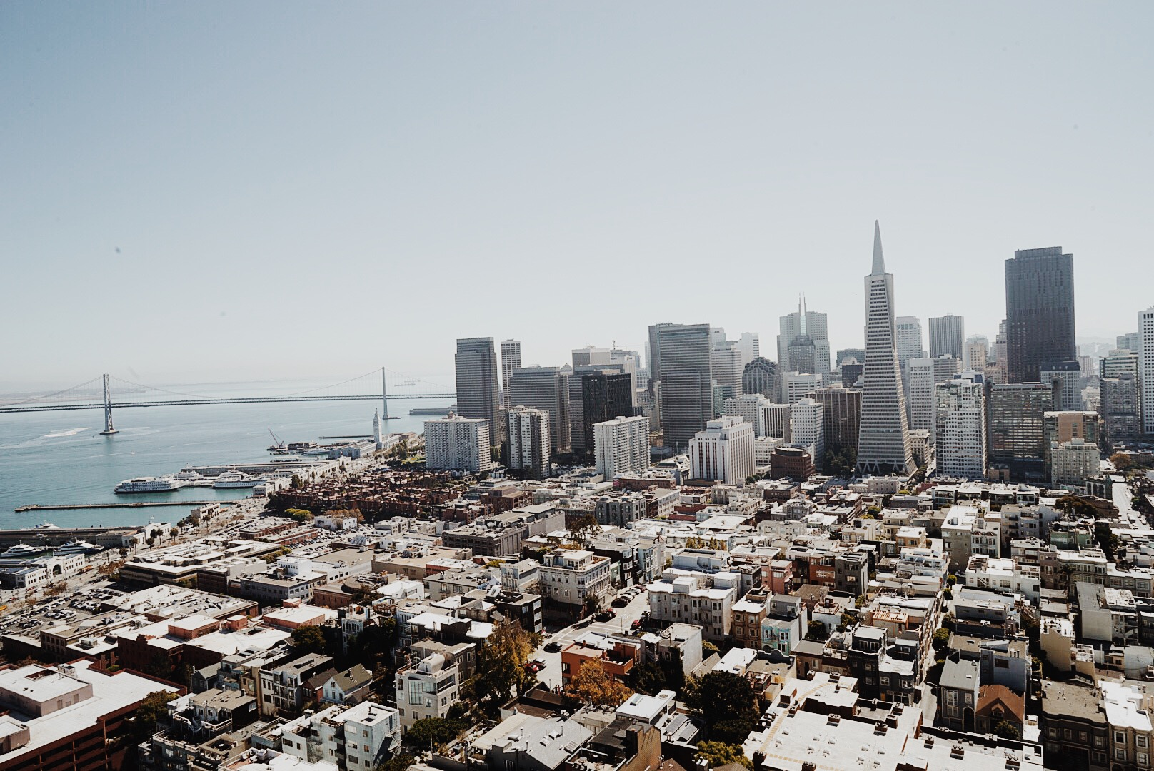 San Francisco Guide coit tower
