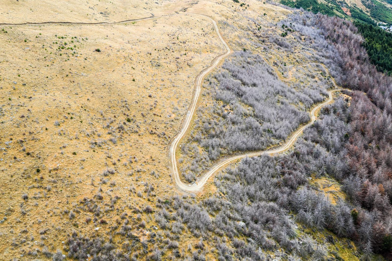 Wakatipu Ridge