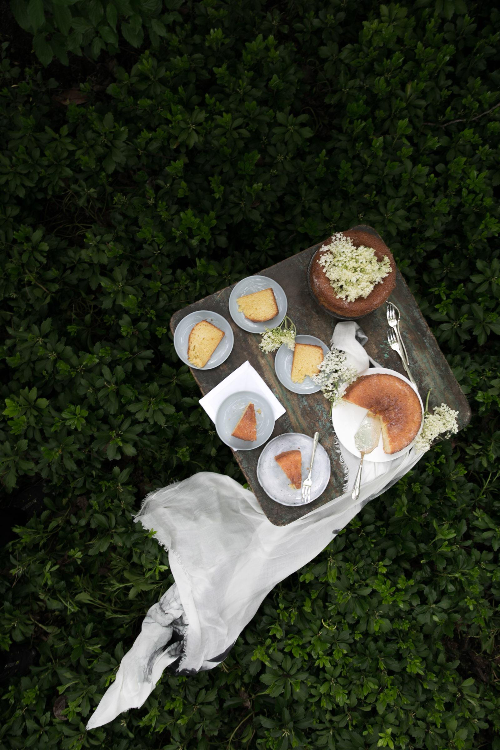 Cake for picnic