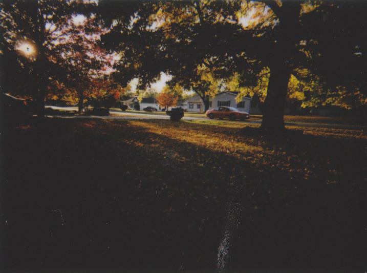 Front yard, Mt. Zion, IL   October 2015