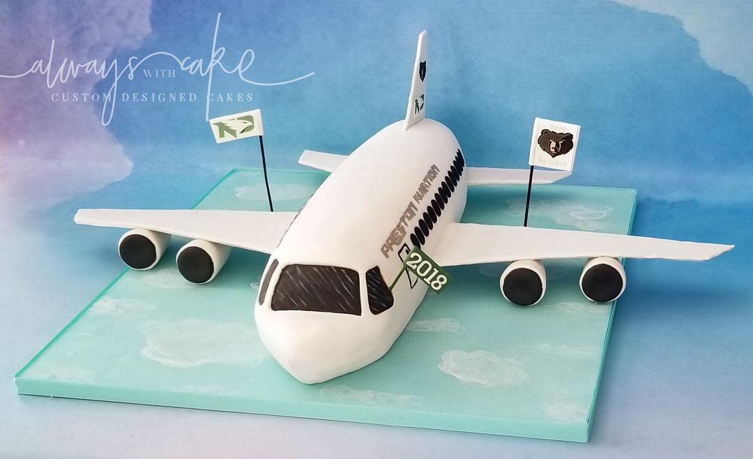 3D Airplane Grad Cake