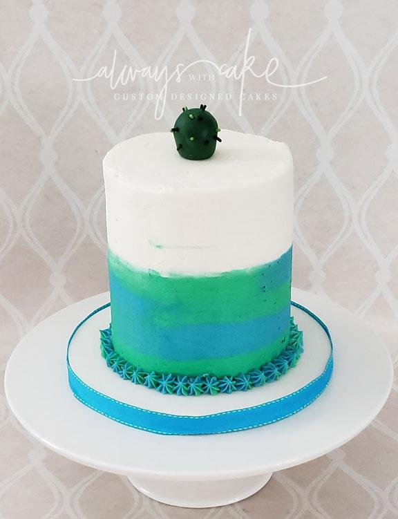 Succulent Matching Smash Cake