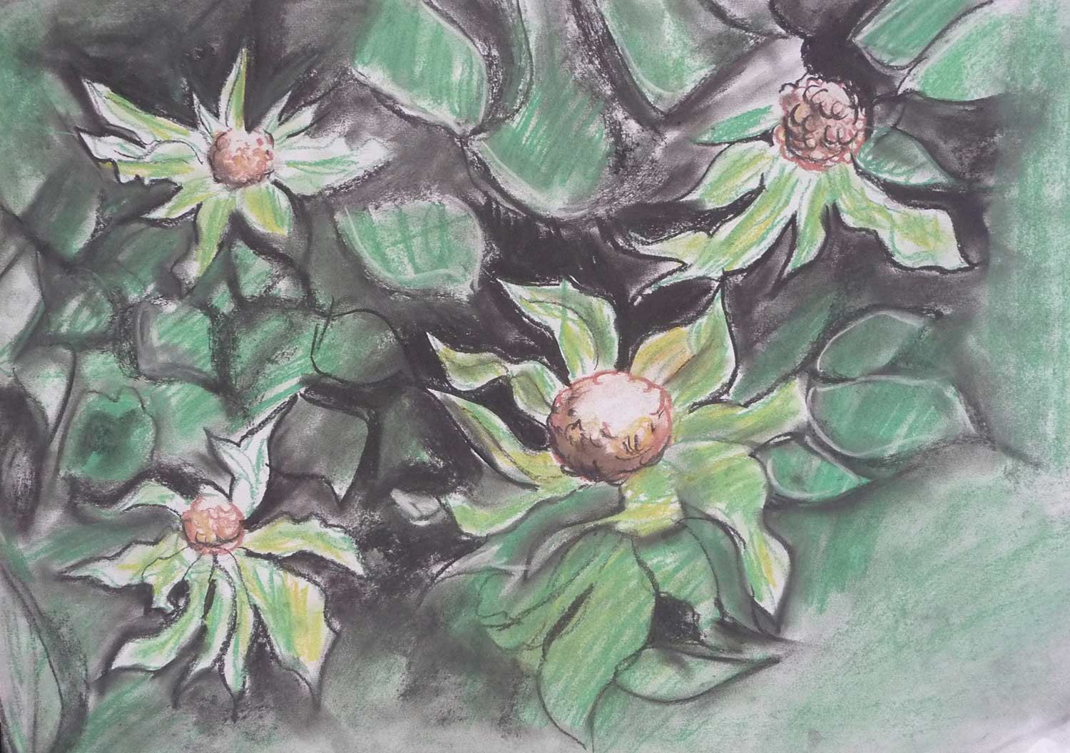 dark-drawing-leafy-flowers.jpg