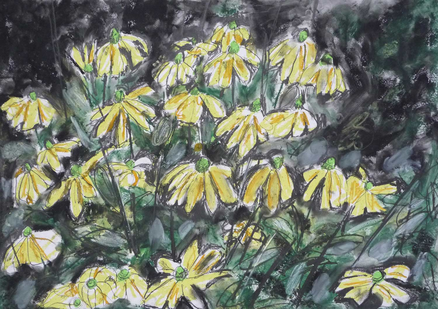dark-drawing-rudbekia.jpg