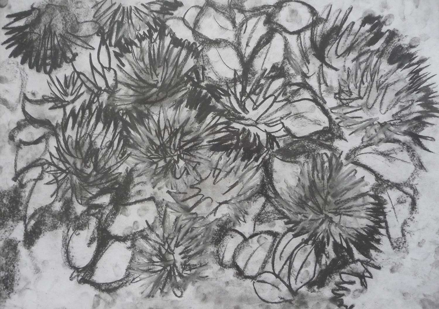 dark-drawing-pom-pom-flowers.jpg