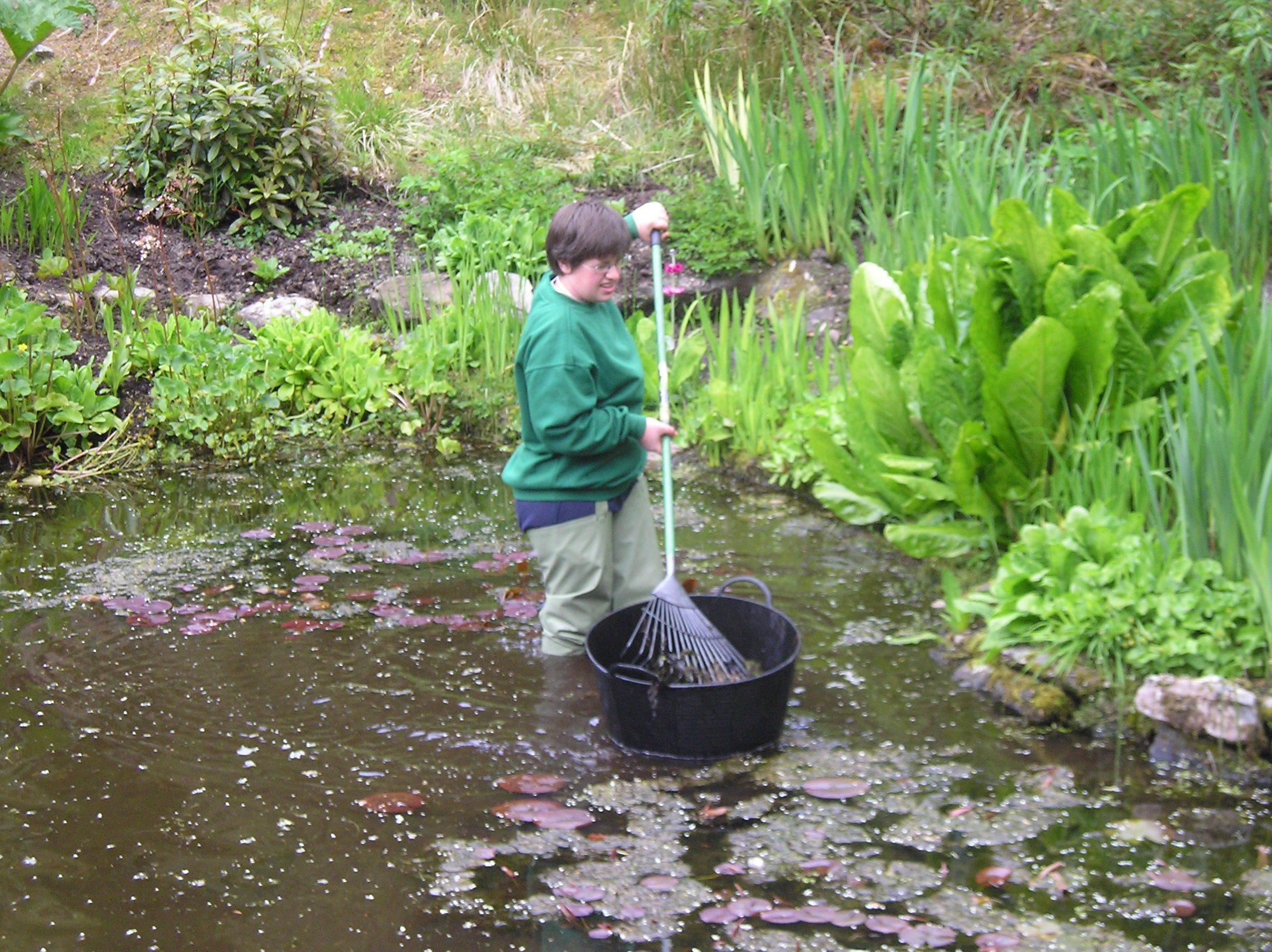 ponds (4).jpg