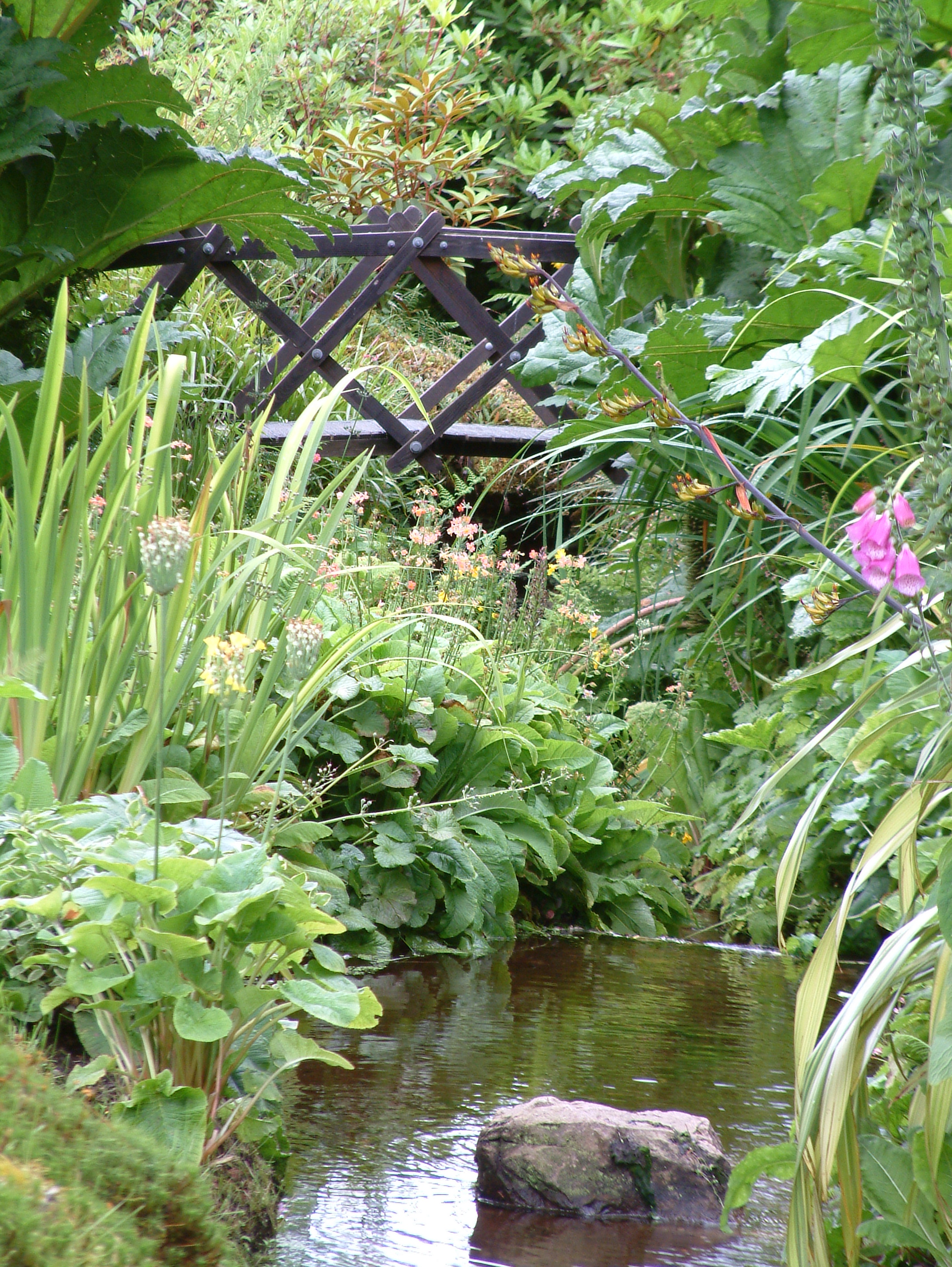 ponds (3).jpg