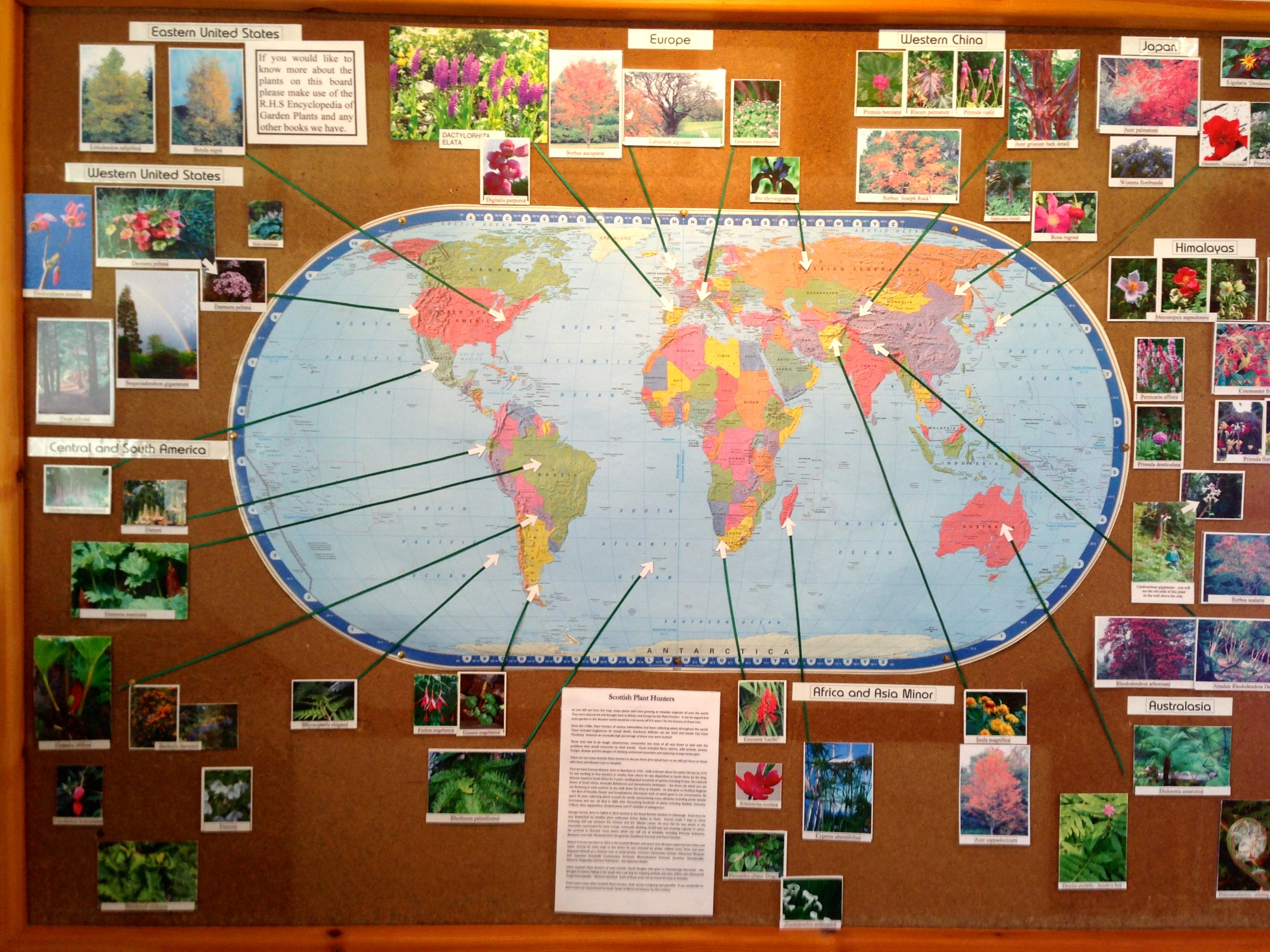 World map with links to plants at Attadale