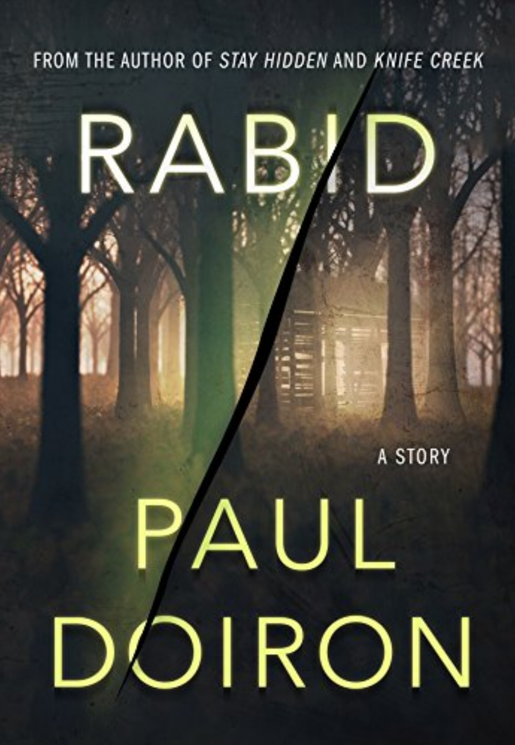 Click cover to buy the short story  Rabid.  (E-book or audiobook only.)