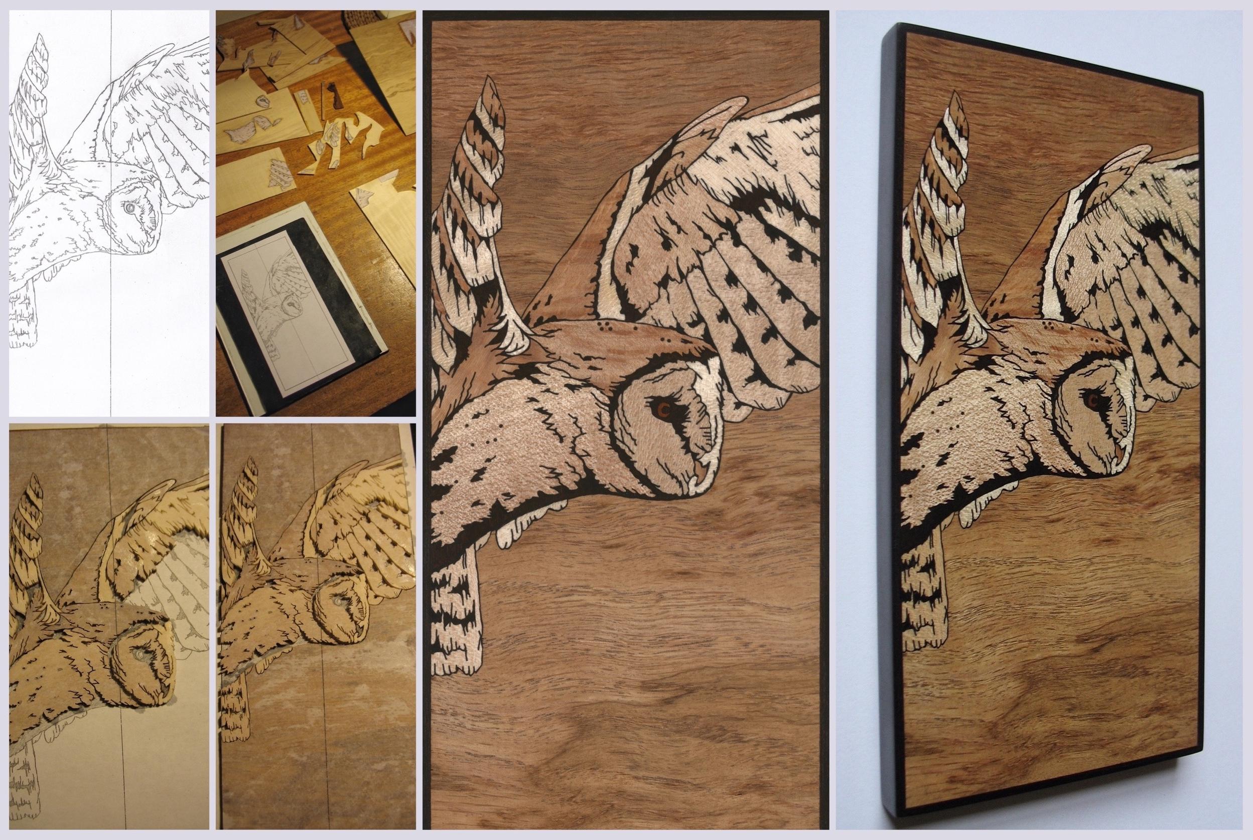 Barn Owl inlay ( jan 16 )