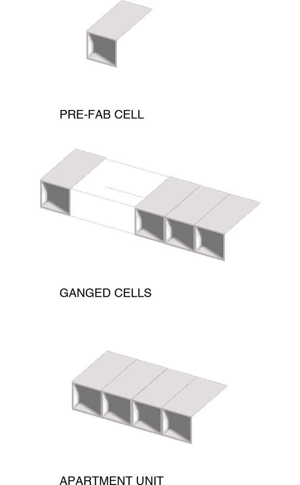 DIAGRAM_cells.jpg