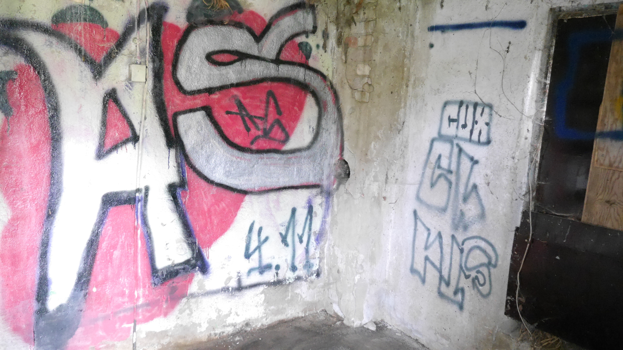 Grafitti 7 shed.JPG
