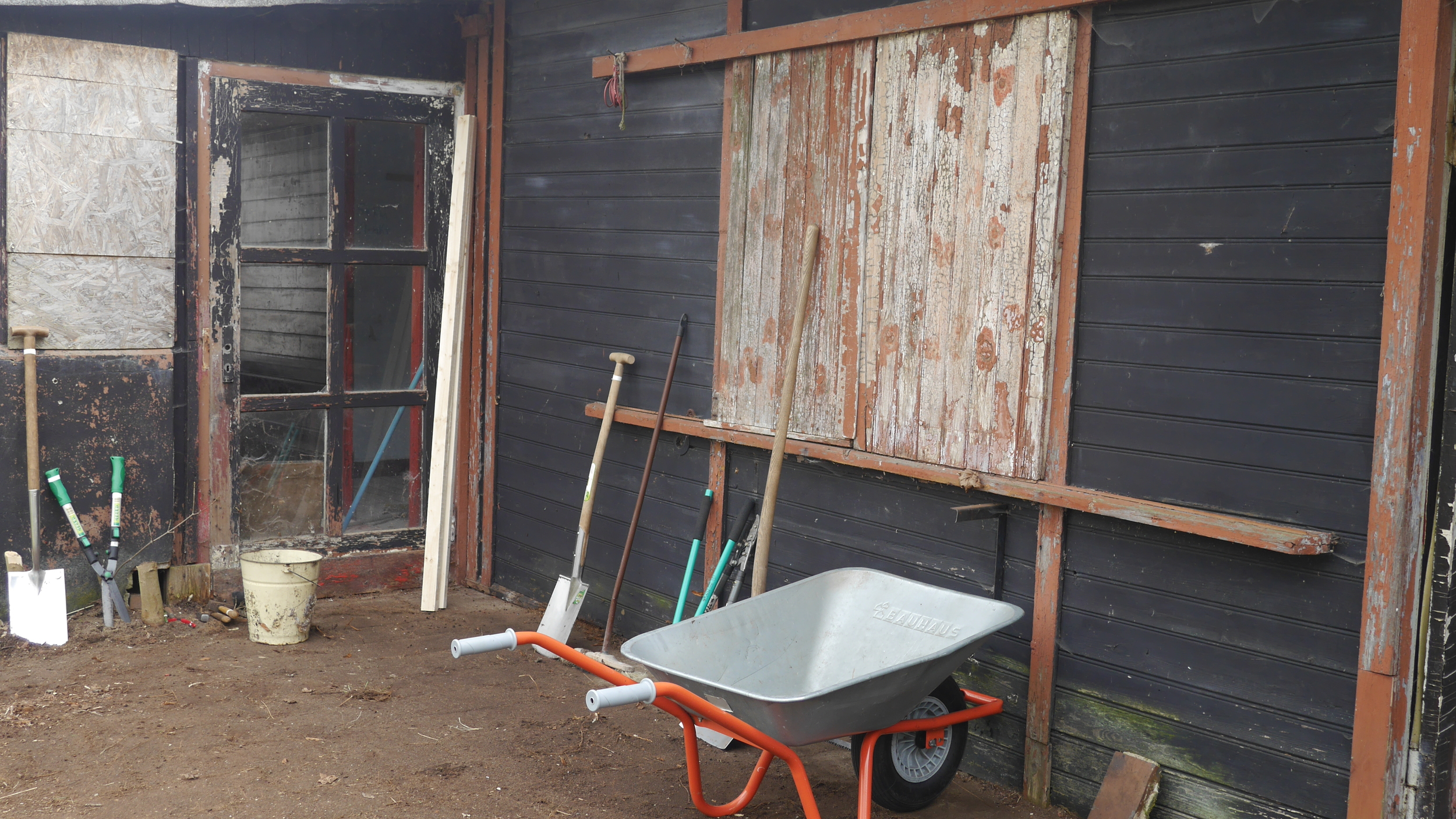 winter garden clean with wheelbarrow.JPG