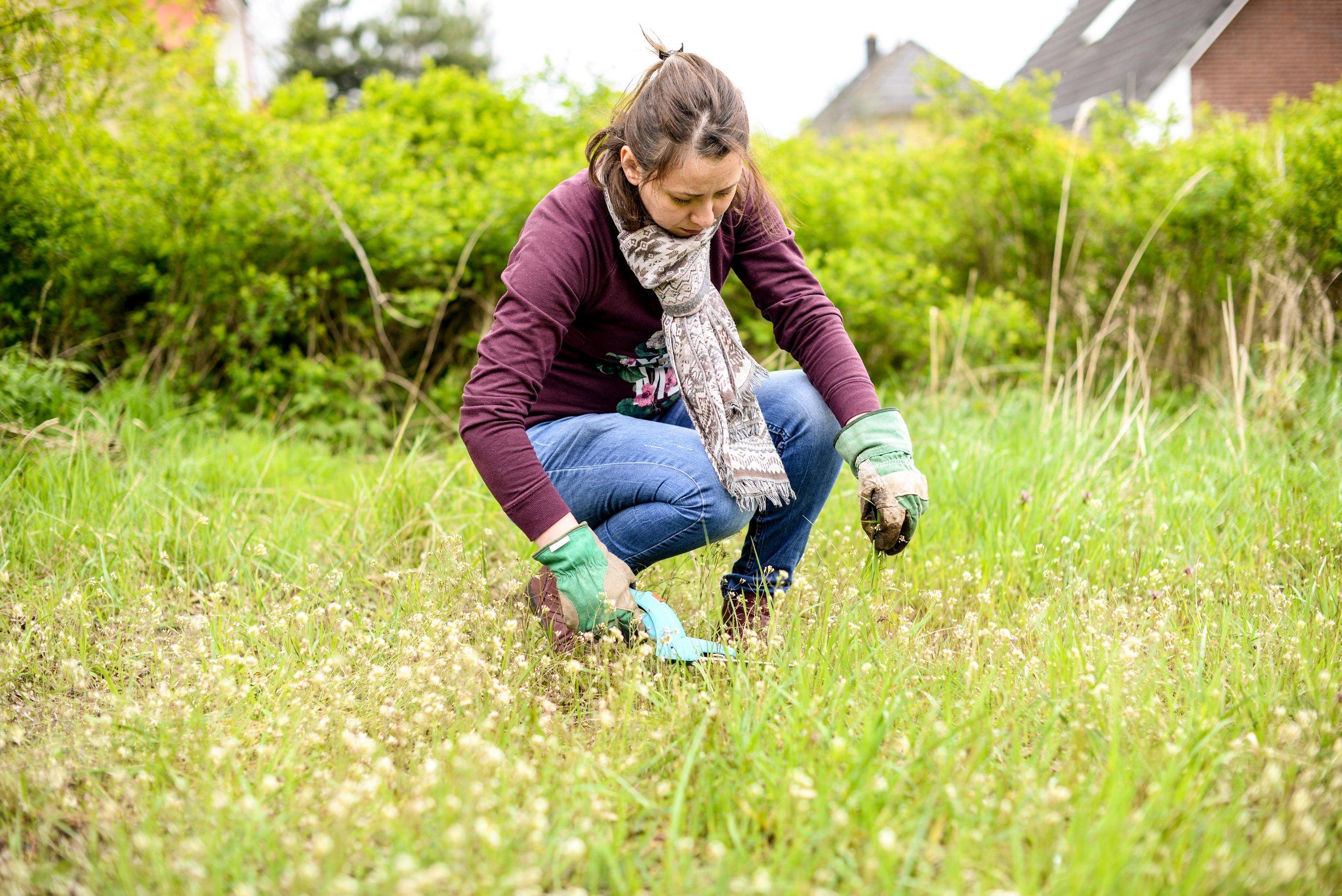 Angélique Préau /   www.angelique-preau.com