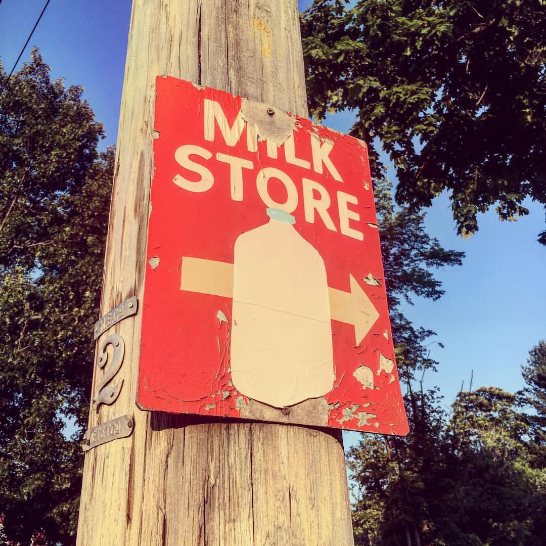 Milk Store.  #vintage #sign #worcester